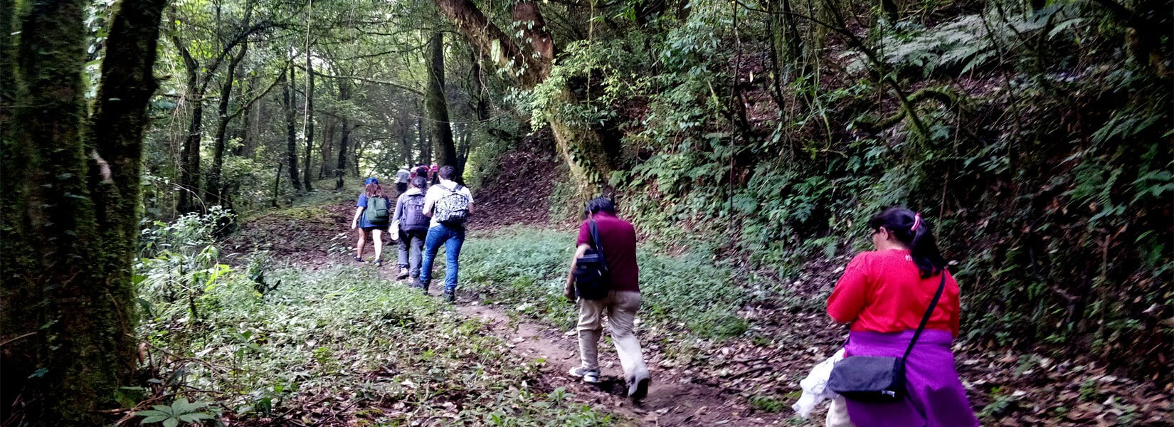 Kakani Suryachaur Day Hiking