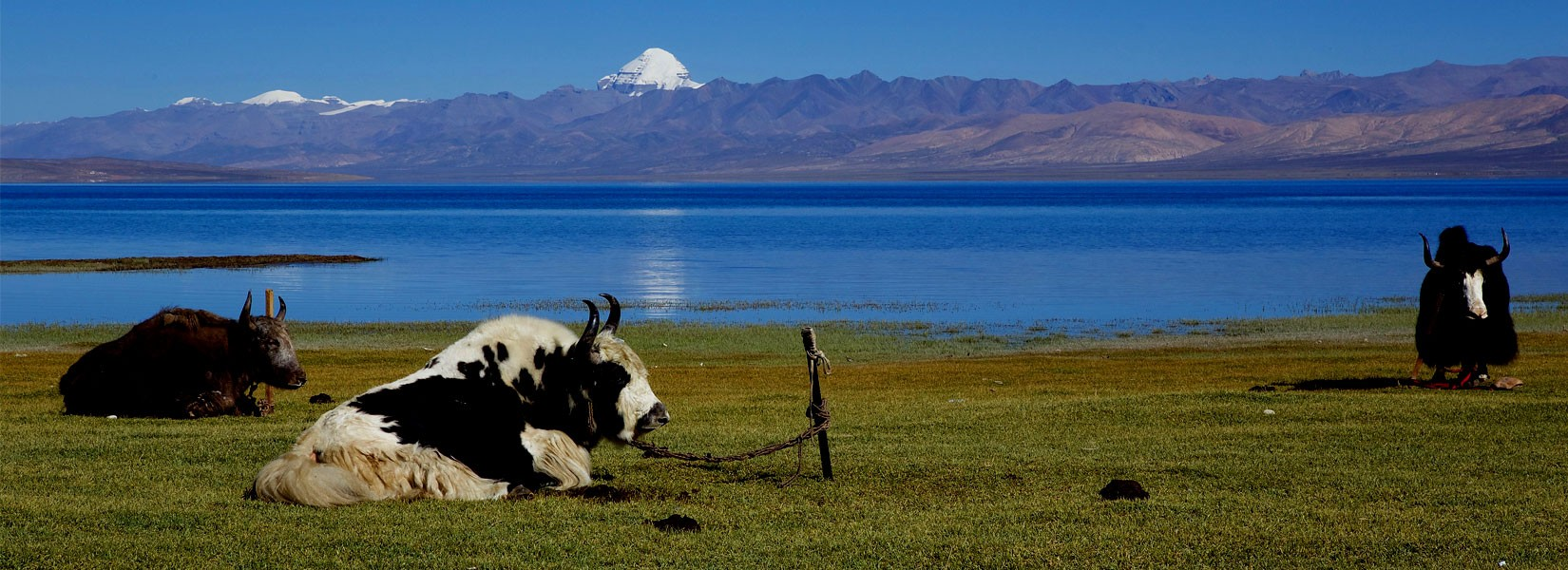 Tibet Mount Kailash Manosarobar Lake Tour
